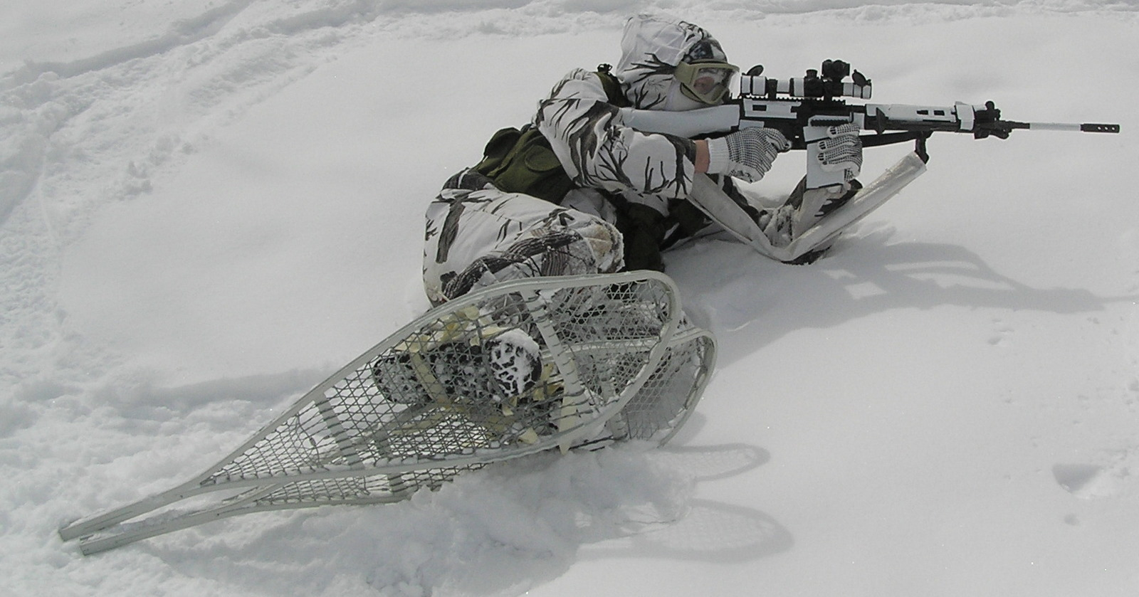 Winter Fal Pic The Fal Files