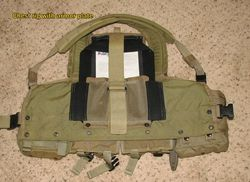 Chest rig with plate