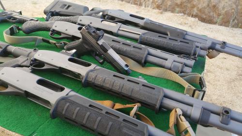 Suarez-shotgun-collection