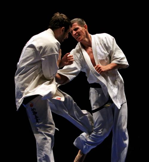 Gedan mawashi geri Kyokushinkai 2